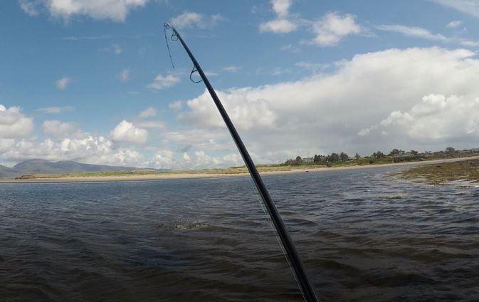 Fish on 1