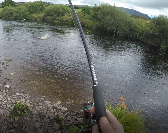 Salmon on 1